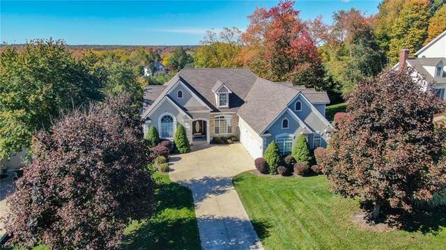 6063 Arlyne Lane, Medina, OH 44256 (MLS #4232127) :: Tammy Grogan and Associates at Cutler Real Estate