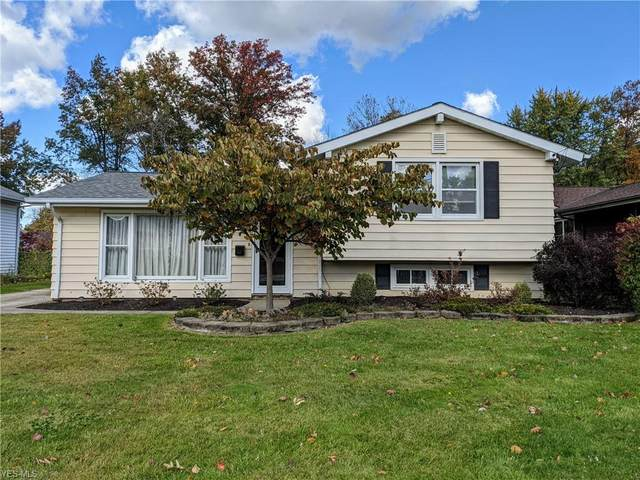6419 Longridge Road, Mayfield Heights, OH 44124 (MLS #4233162) :: Select Properties Realty