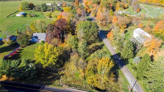 0 Fleming Falls Road, Mansfield, OH 44905 (MLS #4233317) :: Keller Williams Chervenic Realty
