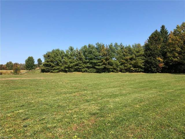 Hunters Trail, Medina, OH 44256 (MLS #4233348) :: The Crockett Team, Howard Hanna