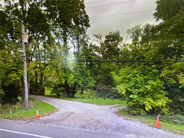 State Road, Akron, OH 44319 (MLS #4233460) :: Select Properties Realty