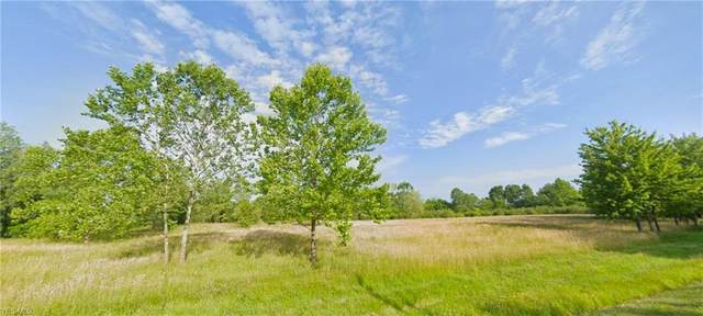 Chagrin River Road, Solon, OH 44022 (MLS #4233519) :: RE/MAX Valley Real Estate