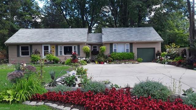 785 Abbe Road, Elyria, OH 44035 (MLS #4234294) :: The Art of Real Estate