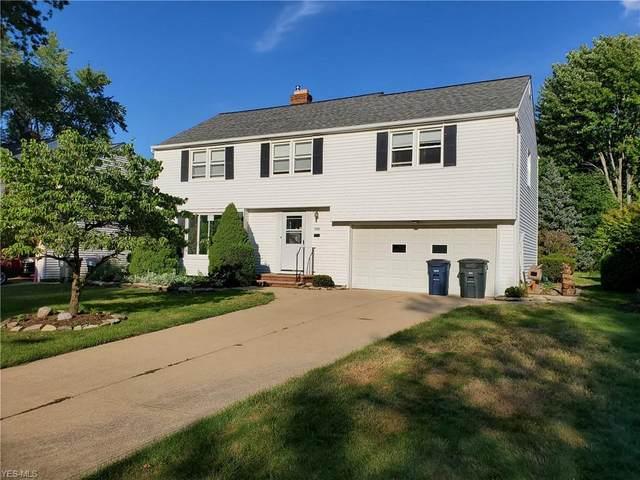 1005 Professor Road, Lyndhurst, OH 44124 (MLS #4234504) :: The Art of Real Estate