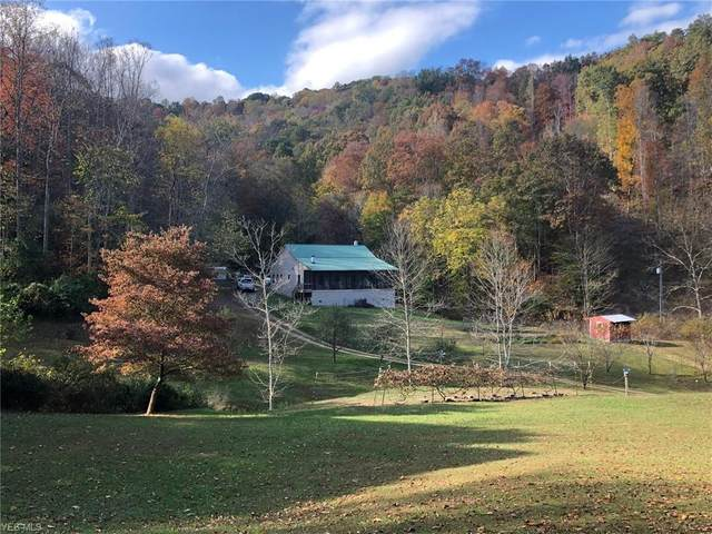 600 Bear Hollow Road, Gassaway, WV 26624 (MLS #4234579) :: The Holly Ritchie Team