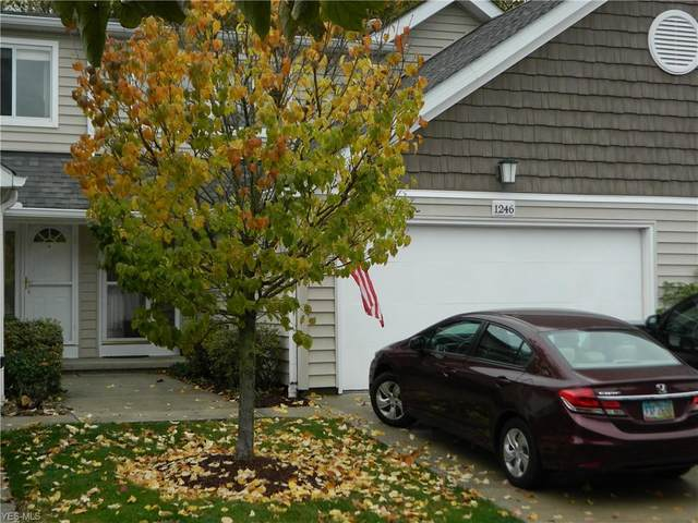 1246 Canyon View Road, Sagamore Hills, OH 44067 (MLS #4234939) :: Krch Realty