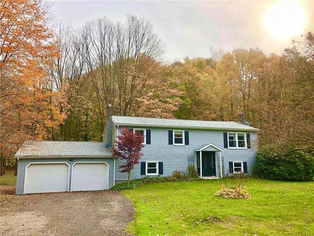 19145 Mumford Road, Garrettsville, OH 44231 (MLS #4235014) :: The Holden Agency