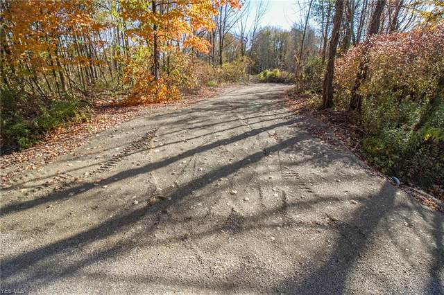 Hatches Corners Road, Conneaut, OH 44030 (MLS #4235226) :: Krch Realty