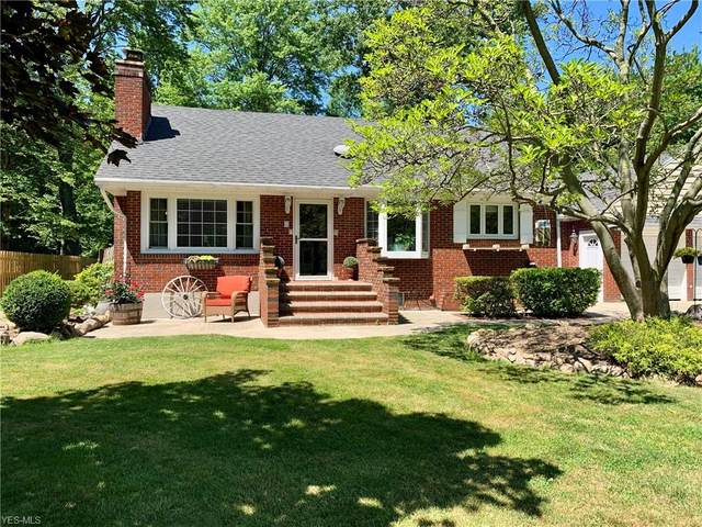 38459 Wood Road, Willoughby, OH 44094 (MLS #4235227) :: The Jess Nader Team | RE/MAX Pathway
