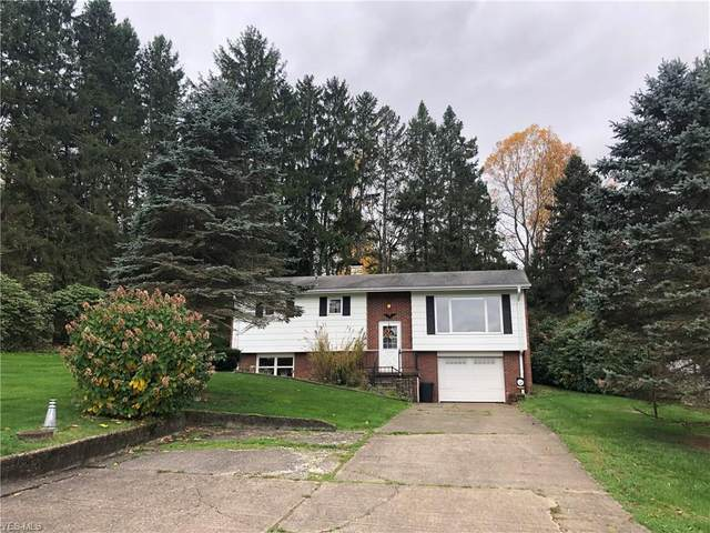 55845 Bel Haven Road, Bellaire, OH 43906 (MLS #4235909) :: Krch Realty