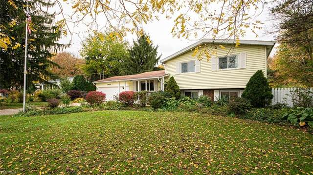 49890 Middle Ridge Road, Amherst, OH 44001 (MLS #4236051) :: Tammy Grogan and Associates at Cutler Real Estate