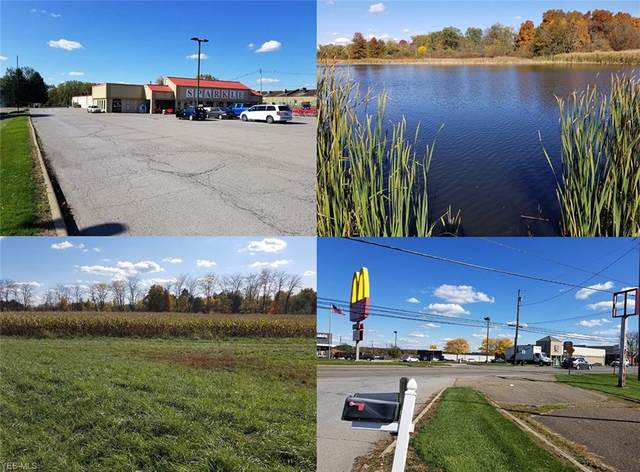 7785 State Route 45, Lisbon, OH 44432 (MLS #4236431) :: The Holden Agency