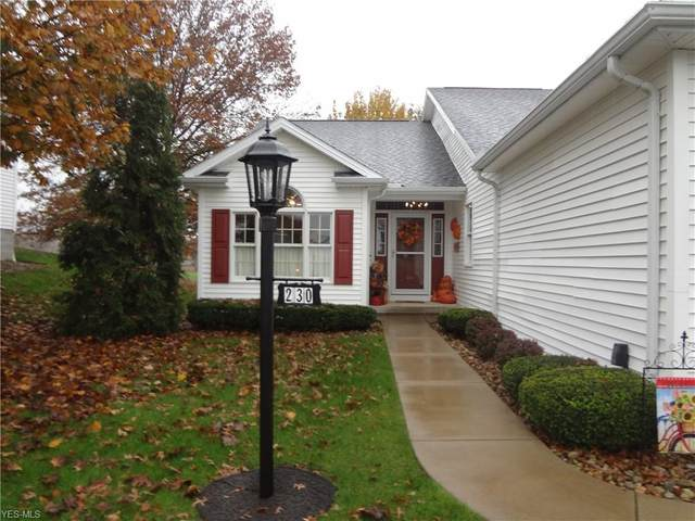 230 Cranberry Court, Warren, OH 44483 (MLS #4236457) :: RE/MAX Valley Real Estate