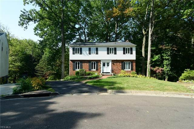 1584 Delcon Circle, Akron, OH 44313 (MLS #4236763) :: The Jess Nader Team | RE/MAX Pathway