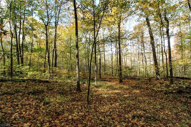 State Route 78 Street, Caldwell, OH 43724 (MLS #4236858) :: RE/MAX Edge Realty
