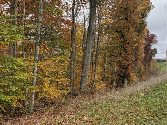 County Road 55, Hammondsville, OH 43930 (MLS #4236919) :: The Holden Agency