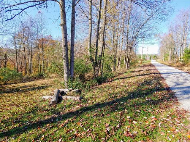 Flawil Drive, Millersburg, OH 44654 (MLS #4237053) :: Tammy Grogan and Associates at Cutler Real Estate