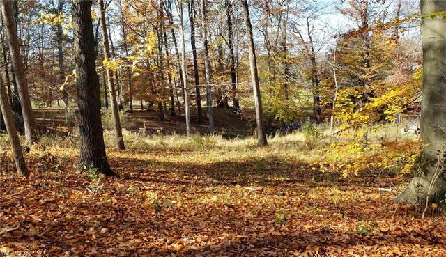 Northbrook Drive, Zanesville, OH 43701 (MLS #4237097) :: The Holden Agency