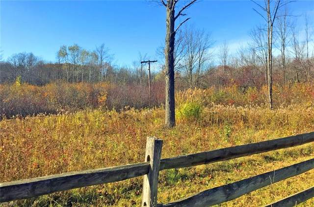 VL County Line Road, Hunting Valley, OH 44022 (MLS #4237580) :: Krch Realty
