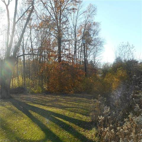 New Road, Youngstown, OH 44515 (MLS #4238525) :: RE/MAX Trends Realty
