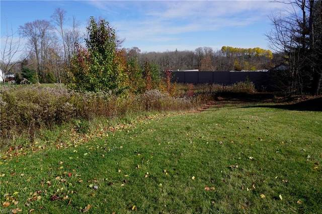 417 Downing Drive, Chardon, OH 44024 (MLS #4240161) :: The Holly Ritchie Team