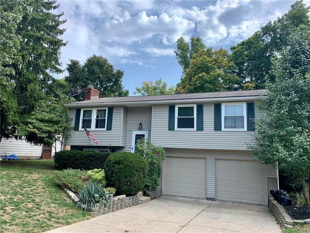 1310 Denise Drive, Kent, OH 44240 (MLS #4240360) :: Tammy Grogan and Associates at Cutler Real Estate