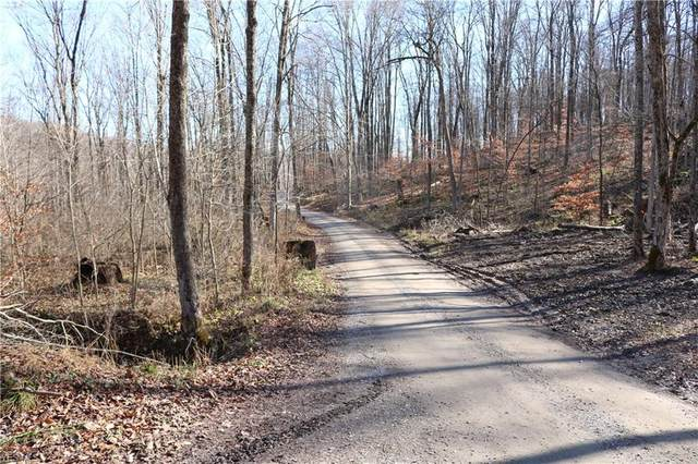 Township Road 252, Killbuck, OH 44637 (MLS #4240786) :: The Crockett Team, Howard Hanna