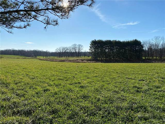 16541 Burkhart Road, Orrville, OH 44667 (MLS #4241330) :: RE/MAX Edge Realty