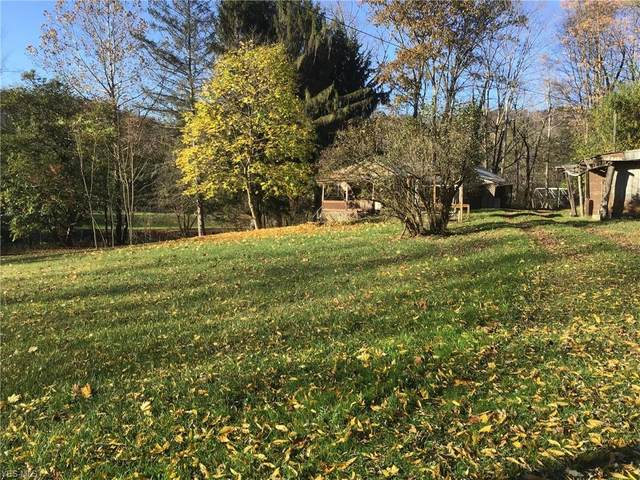 50825 Stuart Road, East Liverpool, OH 43920 (MLS #4241539) :: RE/MAX Trends Realty