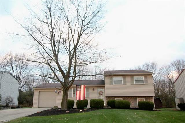 695 Purdue Avenue, Youngstown, OH 44515 (MLS #4241629) :: TG Real Estate