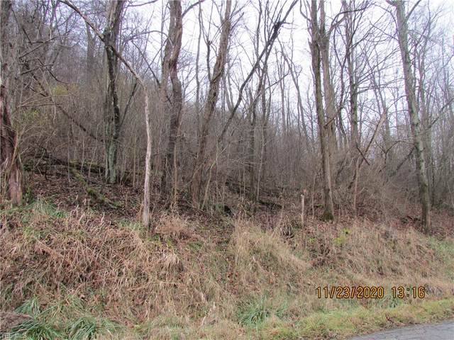 County Road 39 Highway, Bloomingdale, OH 43910 (MLS #4241733) :: RE/MAX Trends Realty