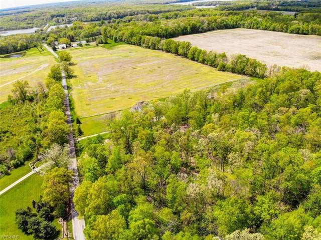 Ellsworth Road, Berlin Center, OH 44401 (MLS #4242019) :: TG Real Estate
