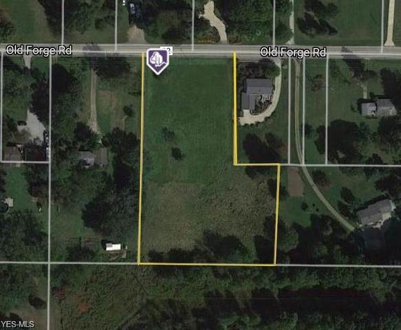 668 Old Forge Road, Kent, OH 44240 (MLS #4242768) :: Krch Realty
