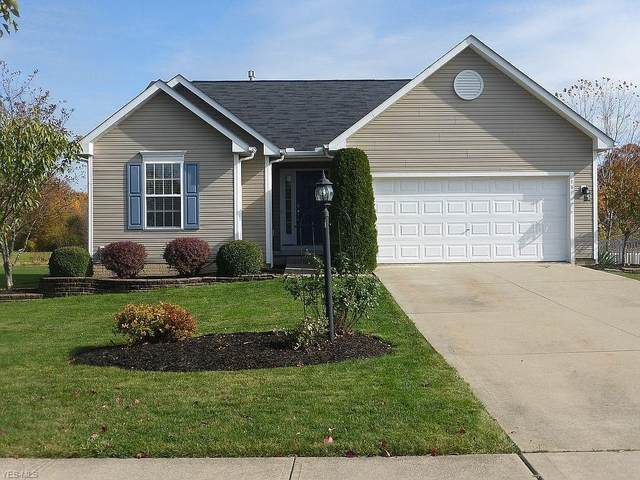 6449 Silverstone Lane, Medina, OH 44256 (MLS #4242805) :: RE/MAX Edge Realty