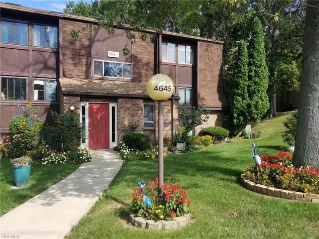 4645 Oakhill Boulevard #301, Lorain, OH 44053 (MLS #4243024) :: RE/MAX Trends Realty
