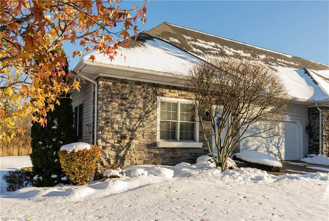 901 Fiddlers Way, Painesville Township, OH 44077 (MLS #4244315) :: The Art of Real Estate
