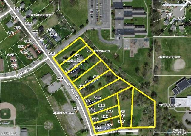 9020 Maple Grove Road, Windham, OH 44288 (MLS #4244709) :: Krch Realty
