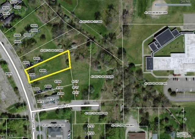 8988 Maple Grove Road, Windham, OH 44288 (MLS #4244728) :: Keller Williams Chervenic Realty