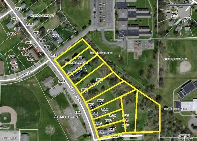 8972 Maple Grove Road, Windham, OH 44288 (MLS #4244730) :: Keller Williams Chervenic Realty
