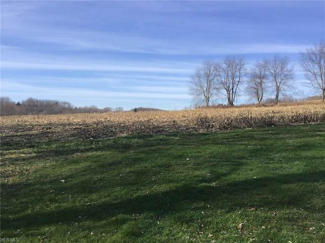 49269 Garden Dr, Calcutta, OH 43920 (MLS #4244827) :: RE/MAX Trends Realty
