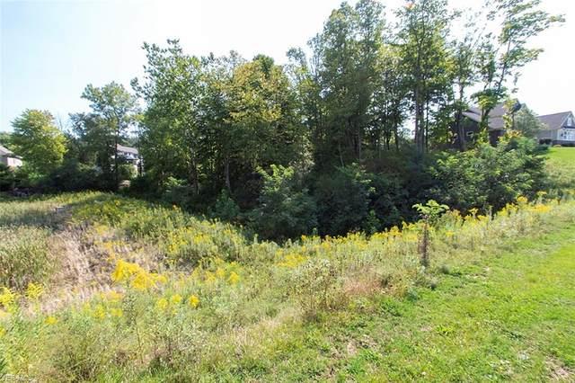 4019 Deer Lake Drive, Medina, OH 44256 (MLS #4244967) :: Select Properties Realty