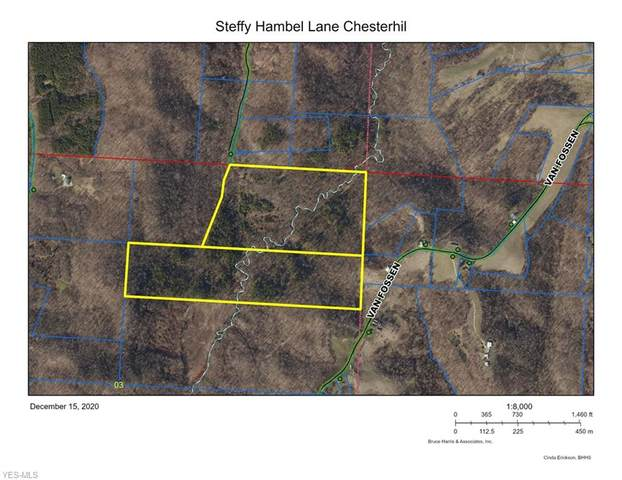 Steffy Hambel Lane, Chesterhill, OH 43728 (MLS #4245582) :: Select Properties Realty