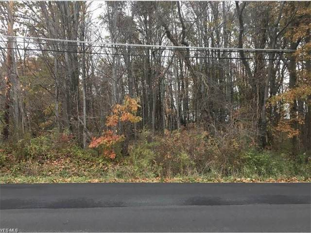 Jarvis Road, Akron, OH 44319 (MLS #4248130) :: Keller Williams Legacy Group Realty