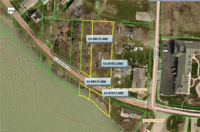 509 W Lakeshore Drive, Kelleys Island, OH 43438 (MLS #4248183) :: The Art of Real Estate
