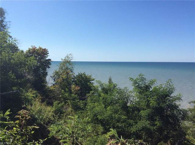 V/L Lake State Rd 531 Road, North Kingsville, OH 44068 (MLS #4248886) :: Select Properties Realty