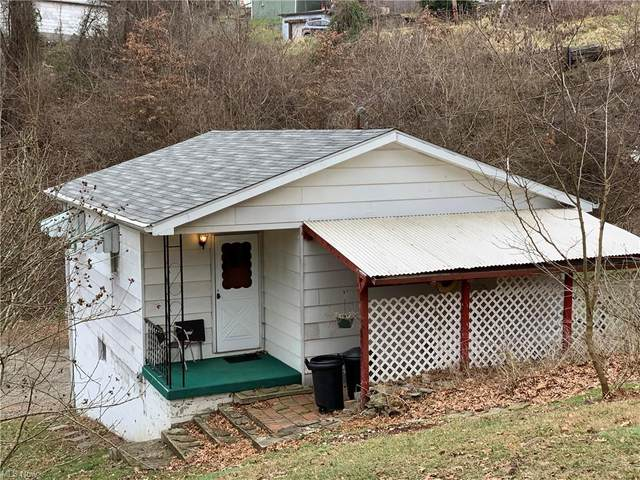519 Ohio Avenue, Martins Ferry, OH 43935 (MLS #4248921) :: TG Real Estate