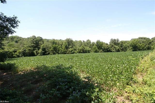 0 Perine- Lot 4D Road, Zanesville, OH 43701 (MLS #4249371) :: The Crockett Team, Howard Hanna