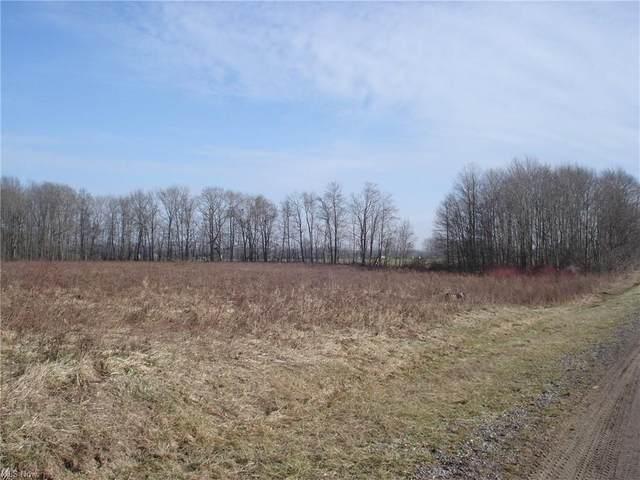 Webster Road, Jefferson, OH 44047 (MLS #4249598) :: Select Properties Realty