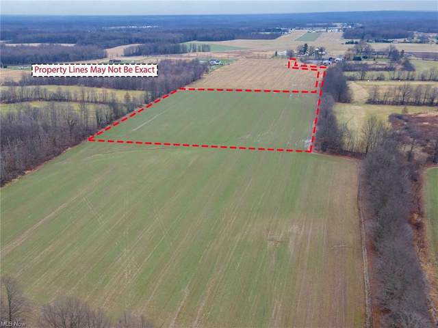 S Duck Creek Road, Berlin Center, OH 44401 (MLS #4249843) :: The Crockett Team, Howard Hanna