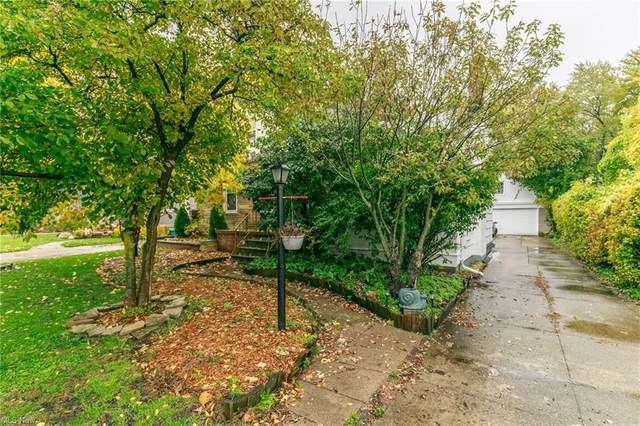 4111 W 220th Street, Fairview Park, OH 44126 (MLS #4249854) :: RE/MAX Trends Realty